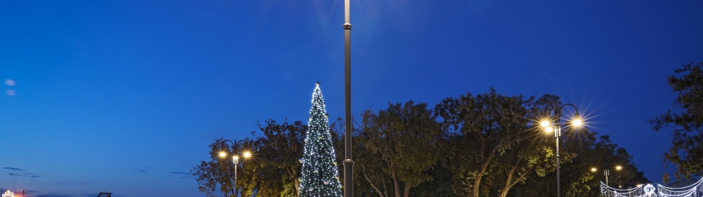 Centralni trg - božićno drvo